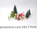 the xmas holiday celebration concept 48177608