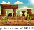 Cartoon Meerkats enjoying on the desert 48180919