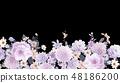 優雅的水彩手繪牡丹和玫瑰花花卉 48186200