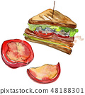 Sandwich in a watercolor style isolated set. Watercolour fast food illustration element on white 48188301