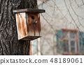 closeup of bird house in tree in urban park 48189061