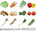 Variety of vegetables Illustration 48202125