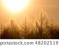 이른 아침의 풍경 48202519