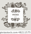Beautiful card with a square frame with wreath of different plants of vintage garden and forest 48211575