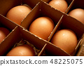 Organic chicken eggs in paper box with compartments 48225075