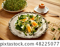 Spring and Easter breakfast with boiled eggs and cress sprouts with sprouts on wooden background 48225077