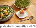 Spring and Easter breakfast with boiled eggs and cress sprouts with sprouts on wooden background 48225078