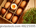 Organic chicken eggs in paper box with compartments and plate of cress sprouts 48225095
