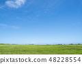 초원과 푸른 하늘 48228554