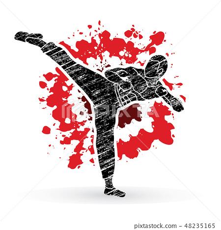 Kung fu, Karate kick graphic vector 48235165
