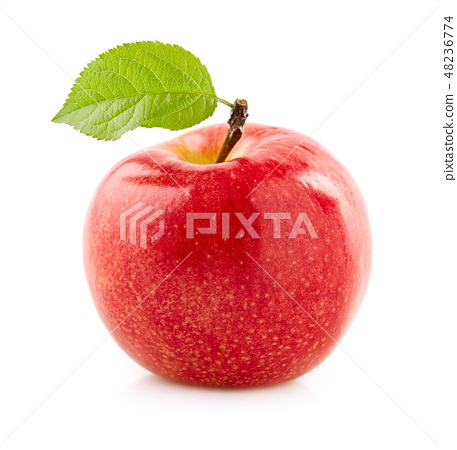 Red apple with leaf 48236774