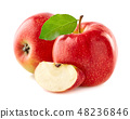 Red apples with slice 48236846