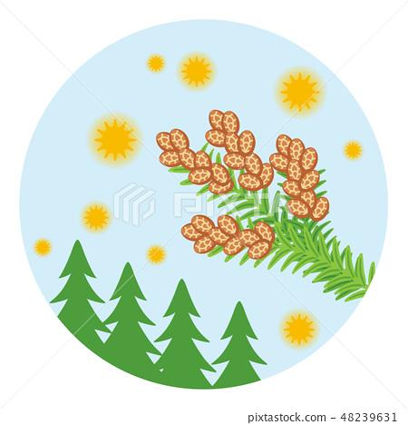 삼나무 꽃가루 비산 이미지 - 원형 클립 아트 48239631