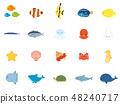 海生物魚集1 48240717