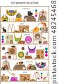 宠物 啮齿类的 装饰品 48245468