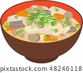 Miso soup with pork and vegetables 48246118