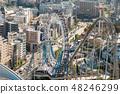 Amusement park roller coaster and Ferris wheel 48246299