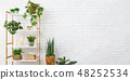 Bookcase with various plants over white wall 48252534