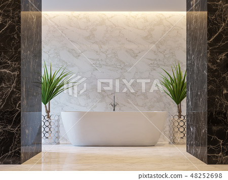 Luxury bathroom 3d render 48252698