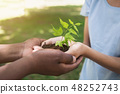 Two hands holding and caring young green plant 48252743