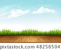 Nature spring background with green grass 48256504