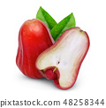 rose apple or chomphu with green leaf isolated  48258344