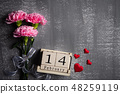 Valentines day and love concept. Pink carnation 48259119