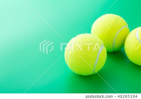 테니스 공 48265104