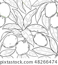 mango vector pattern 48266474