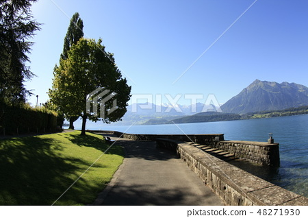 瑞士 土恩湖畔的早晨 48271930