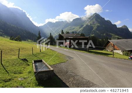 阿爾卑斯山麓 放牧水槽 48271945