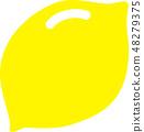 레몬 1 개 48279375