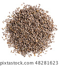 A heap of quality seeds of parsley, for your beautiful garden. Can be used for create new unique 48281623