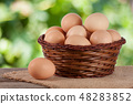 eggs in a wicker basket on a wooden board with blurred garden background 48283852