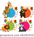 一组 一套 动物 48285450