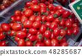 Mini tomato aiko 48285687