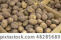 Potato 48285689