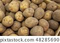 Potato 48285690