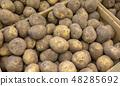 Potato 48285692