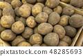 potato 48285693