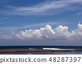 Pacific beautiful sky sea of clouds 48287397