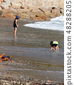 It's a summer seaside summer ~ 48288205
