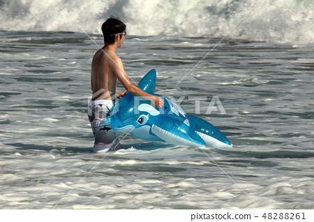这是一个夏天的海边夏天〜 48288261