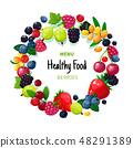 Fresh organic summer berries and fruits. Strawberry blueberry gooseberry blackberry raspberry 48291389