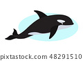 Orca icon, whale killer, isolated on white background 48291510