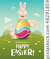 토끼, 새끼토끼, 화려 48291859