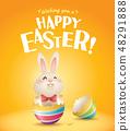 토끼, 화려, 다채롭다 48291888