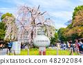우에노 공원 봄 (도쿄도 타이토 구 우에노 공원 앞 입구) 2018 년 3 월 촬영 48292084