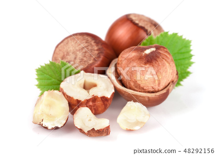 Hazelnuts with leaves isolated on white background 48292156
