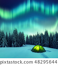 Northern lights in winter forest 48295644